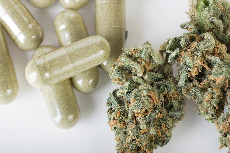Marihuana y fármacos: su interacción