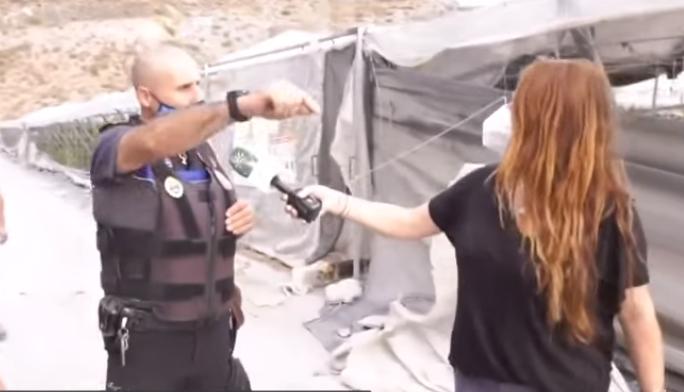 Los ladrones confunden el cáñamo con la marihuana en Andalucía