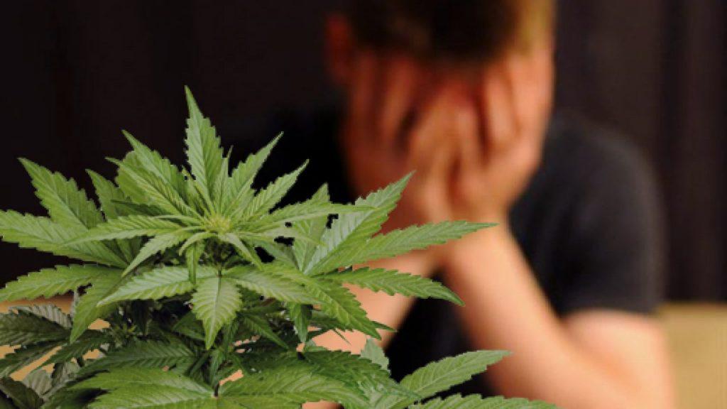 ¿La marihuana es adictiva?