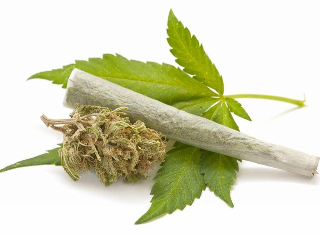 ¿Es Cierto que la Marihuana es una droga de Inicio?