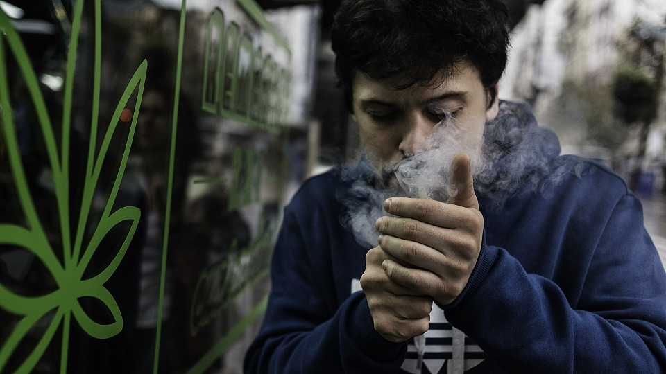 Datos del Uso Recreativo de la Marihuana