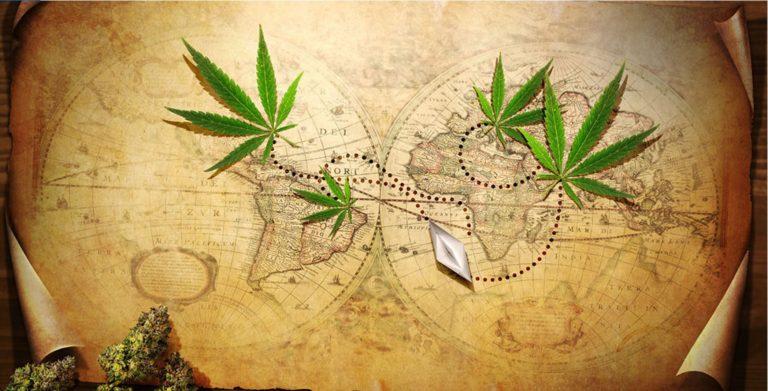¿Cuál es su Origen? Donde nació la Marihuana