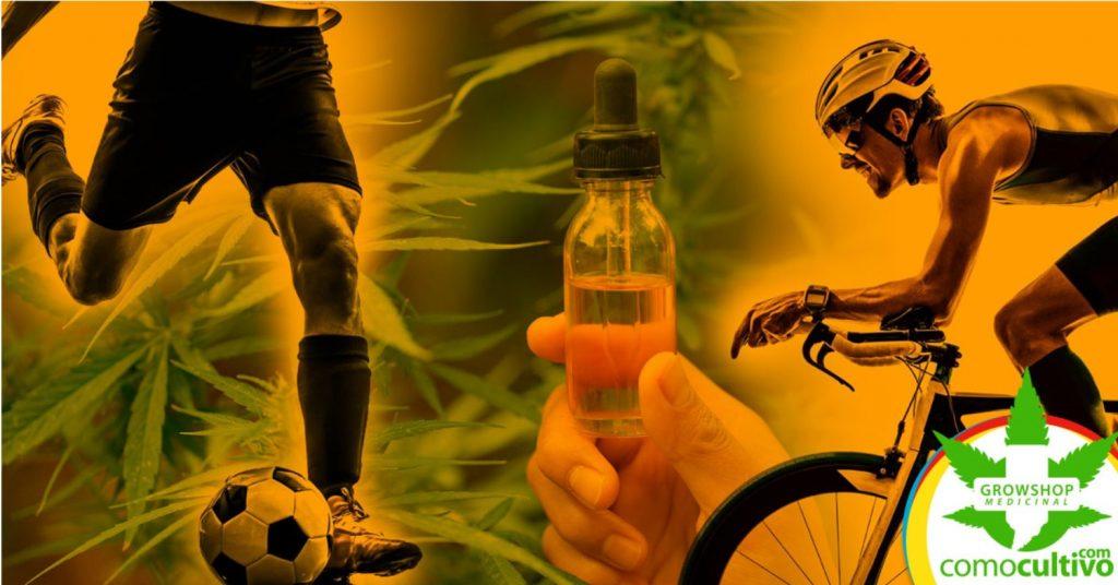 ¿Puede el CBD ayudar al rendimiento deportivo?