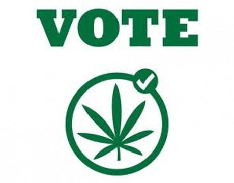 La Iniciativa de la Legalización de la Marihuana en el Estado de Montana enfrenta un desafío legal de última hora en la Corte Suprema del Estado