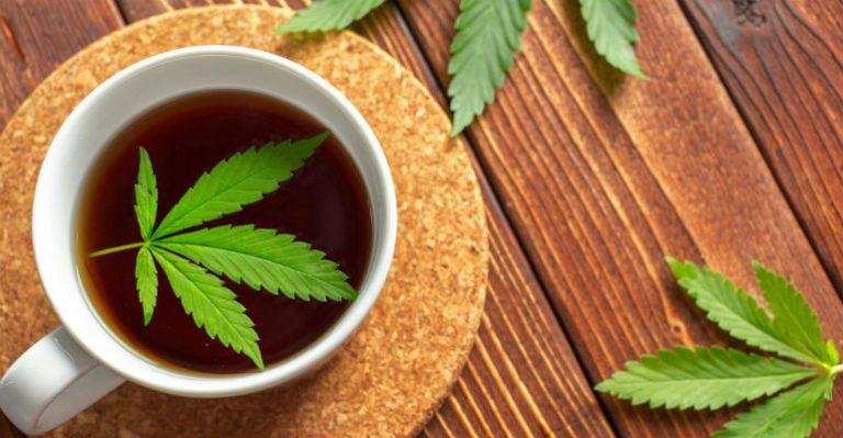 Las Bondades del Té de Marihuana