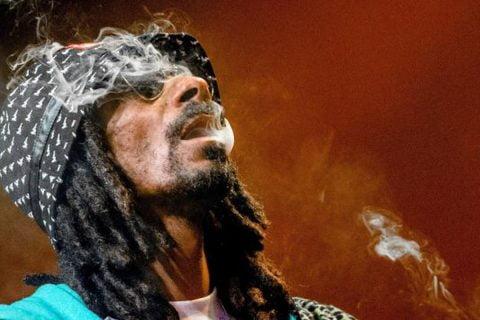 8 Famosos que consumen Marihuana