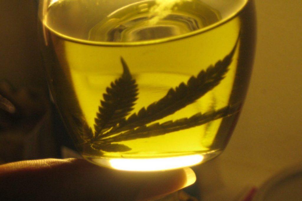 ¿Como hacer un aceite de cannabis?