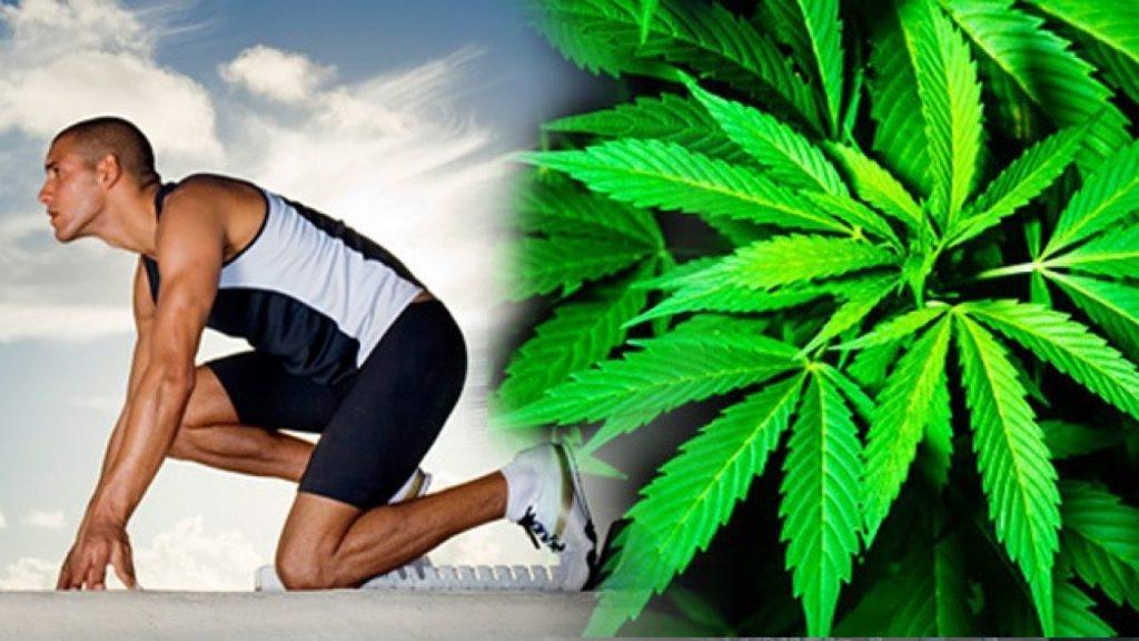 Fitness y marihuana Qué actividades mejoran con un colocón