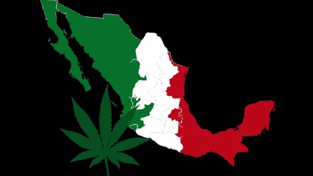 Cámara de Diputados de México se reúne en febrero para despenalizar y regular la marihuana