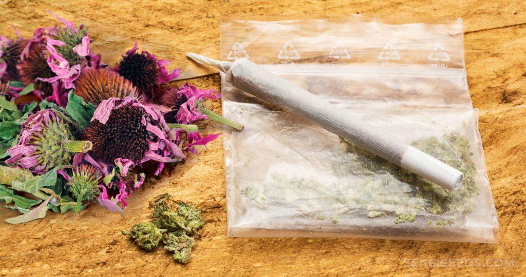 mezclar el cannabis con otras plantas medicinales