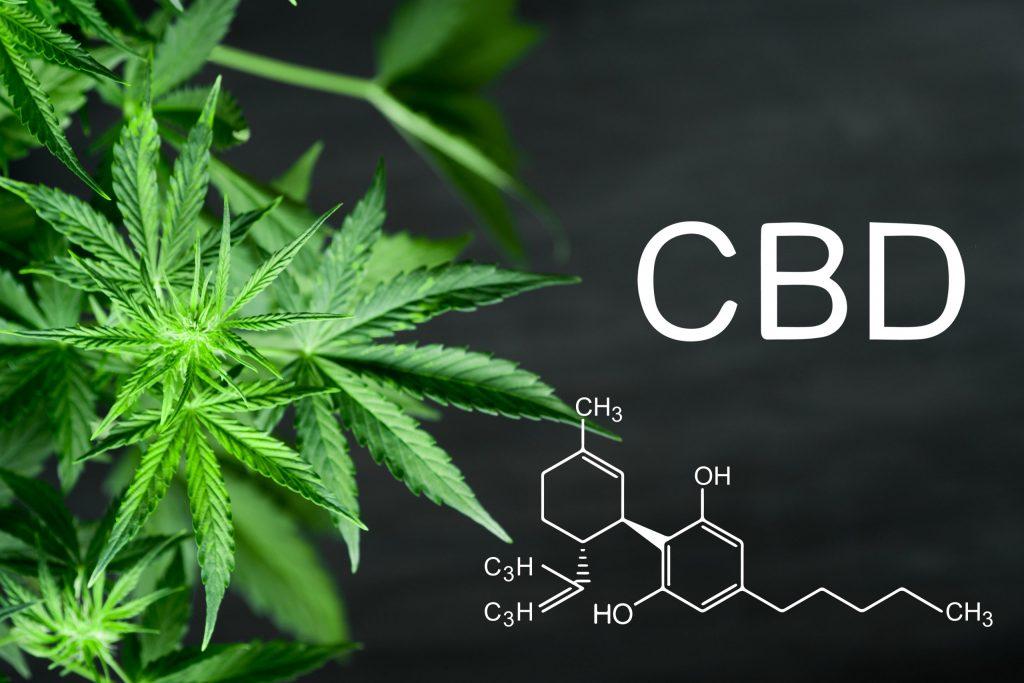 Guía informativa sobre el THC (tetrahidrocannabinol)